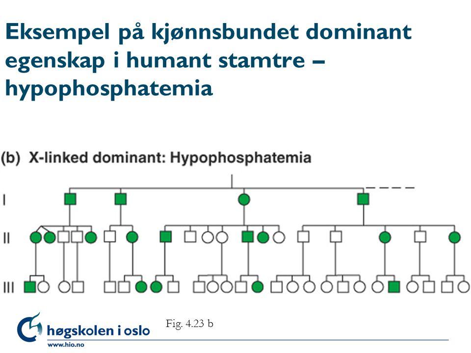 Eksempel på kjønnsbundet dominant egenskap i humant stamtre – hypophosphatemia