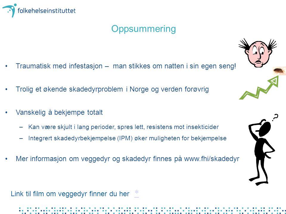 Oppsummering Traumatisk med infestasjon – man stikkes om natten i sin egen seng! Trolig et økende skadedyrproblem i Norge og verden forøvrig.