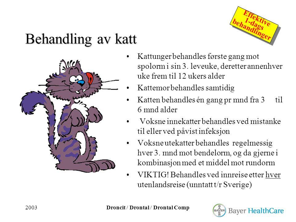 Behandling av katt Kattunger behandles første gang mot spolorm i sin 3. leveuke, deretter annenhver uke frem til 12 ukers alder.