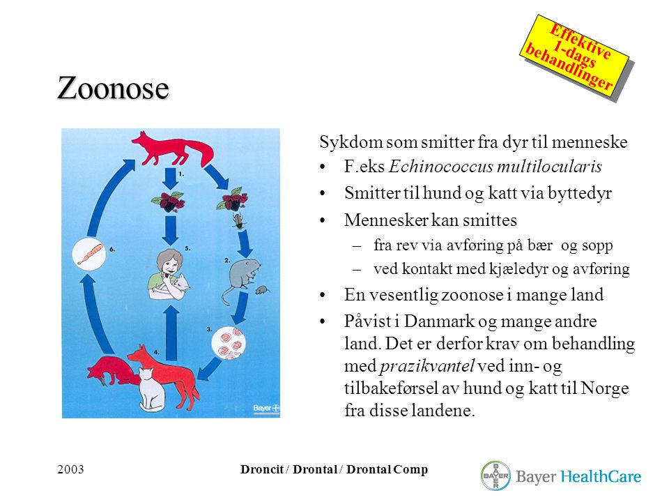 Zoonose Sykdom som smitter fra dyr til menneske