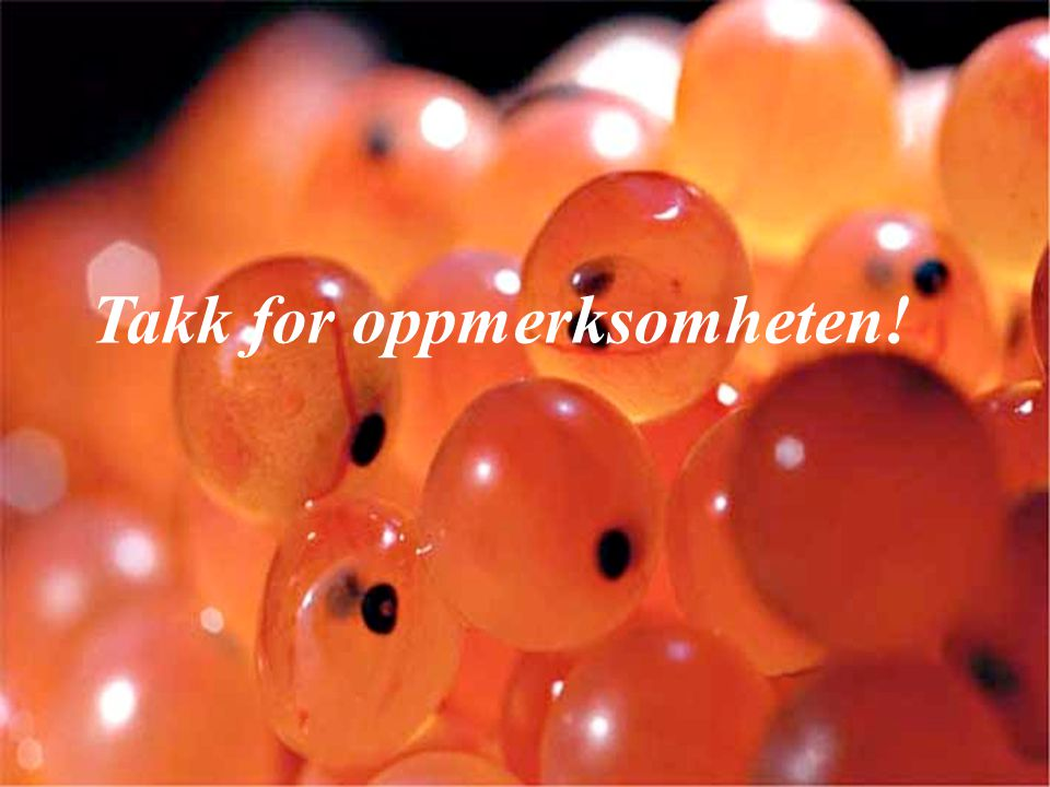 Takk for oppmerksomheten! Thank you for your attention!
