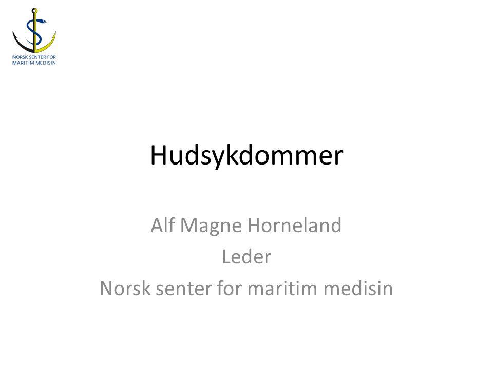 Alf Magne Horneland Leder Norsk senter for maritim medisin