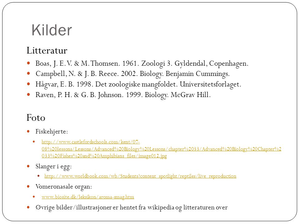 Kilder Litteratur Foto