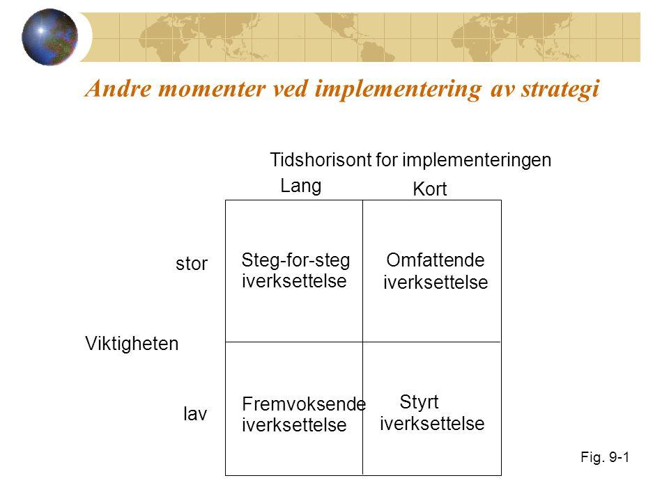 Andre momenter ved implementering av strategi