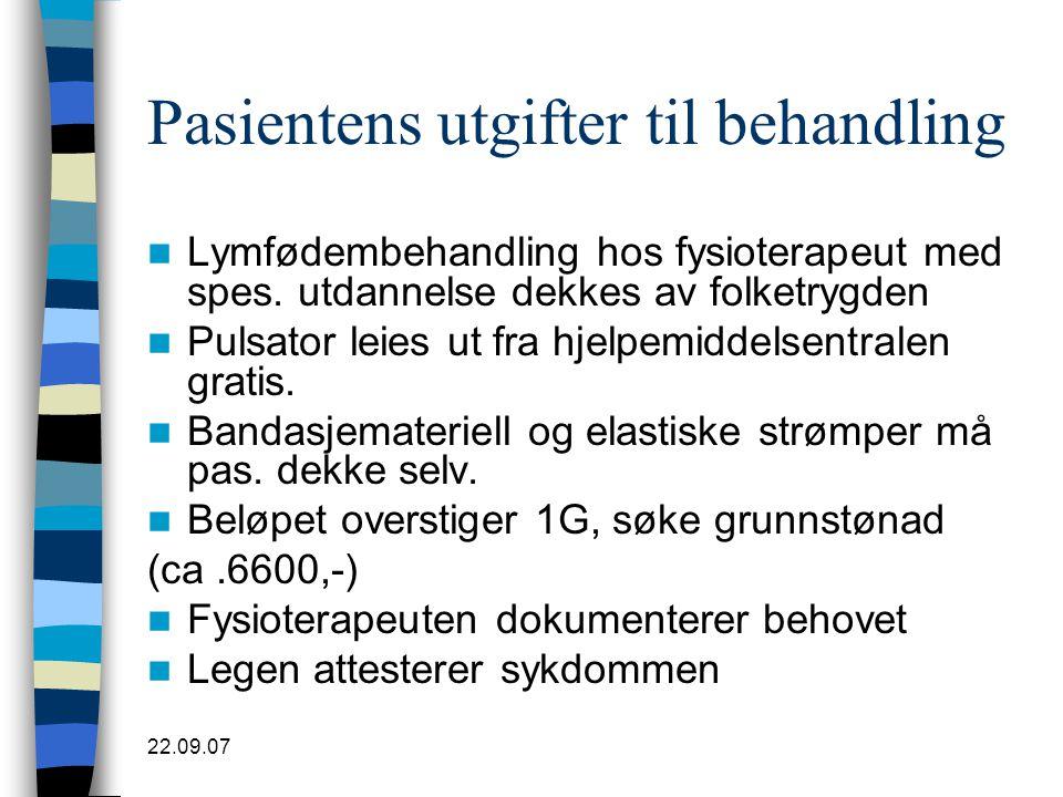 Pasientens utgifter til behandling