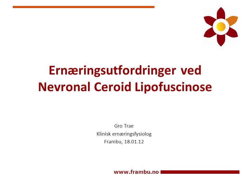 Ernæringsutfordringer ved Nevronal Ceroid Lipofuscinose