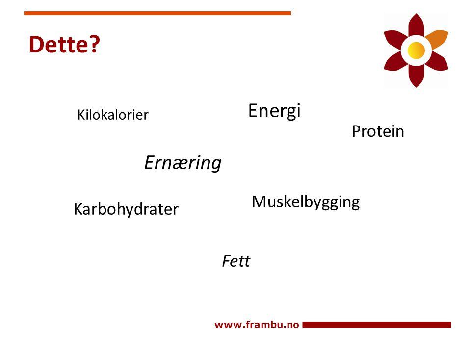 Dette Energi Ernæring Protein Muskelbygging Karbohydrater Fett