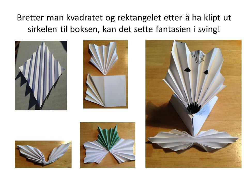 Bretter man kvadratet og rektangelet etter å ha klipt ut sirkelen til boksen, kan det sette fantasien i sving!