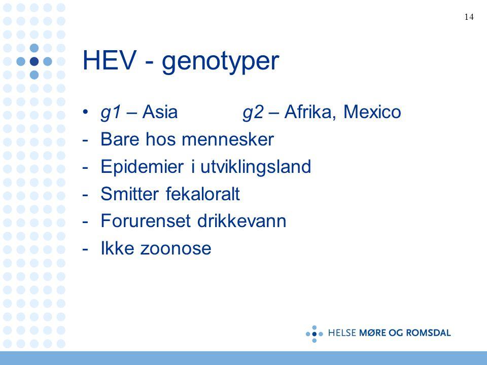 HEV - genotyper g1 – Asia g2 – Afrika, Mexico Bare hos mennesker