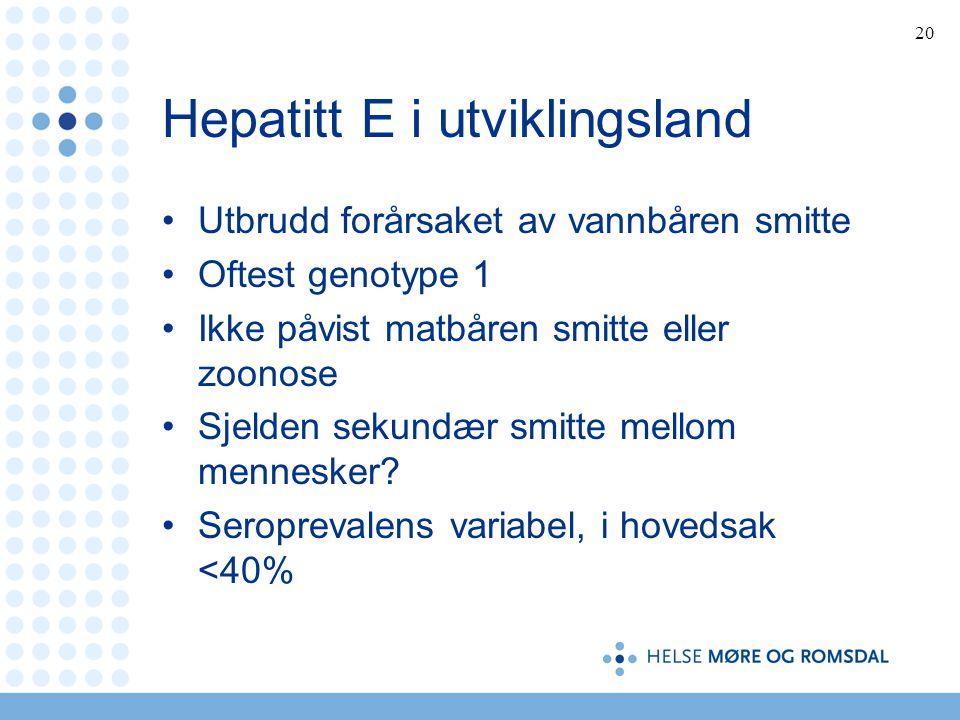 Hepatitt E i utviklingsland