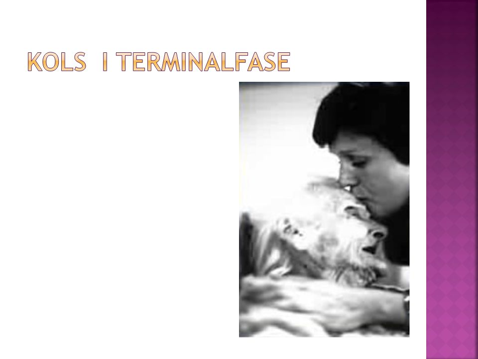 KOLS i terminalfase (Dean 2008)