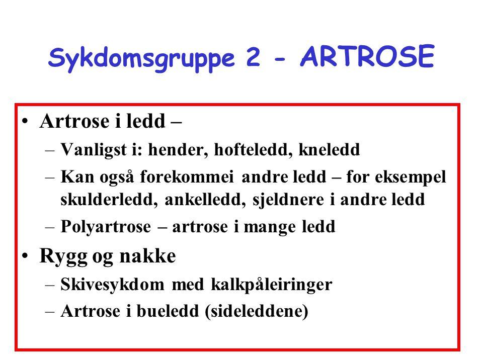 Sykdomsgruppe 2 - ARTROSE