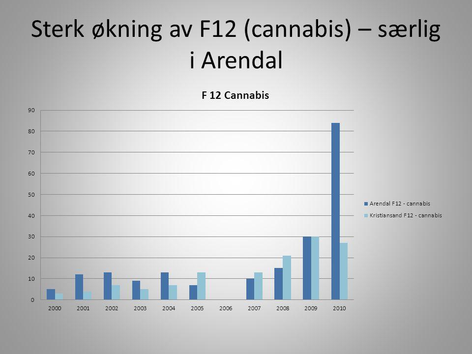 Sterk økning av F12 (cannabis) – særlig i Arendal