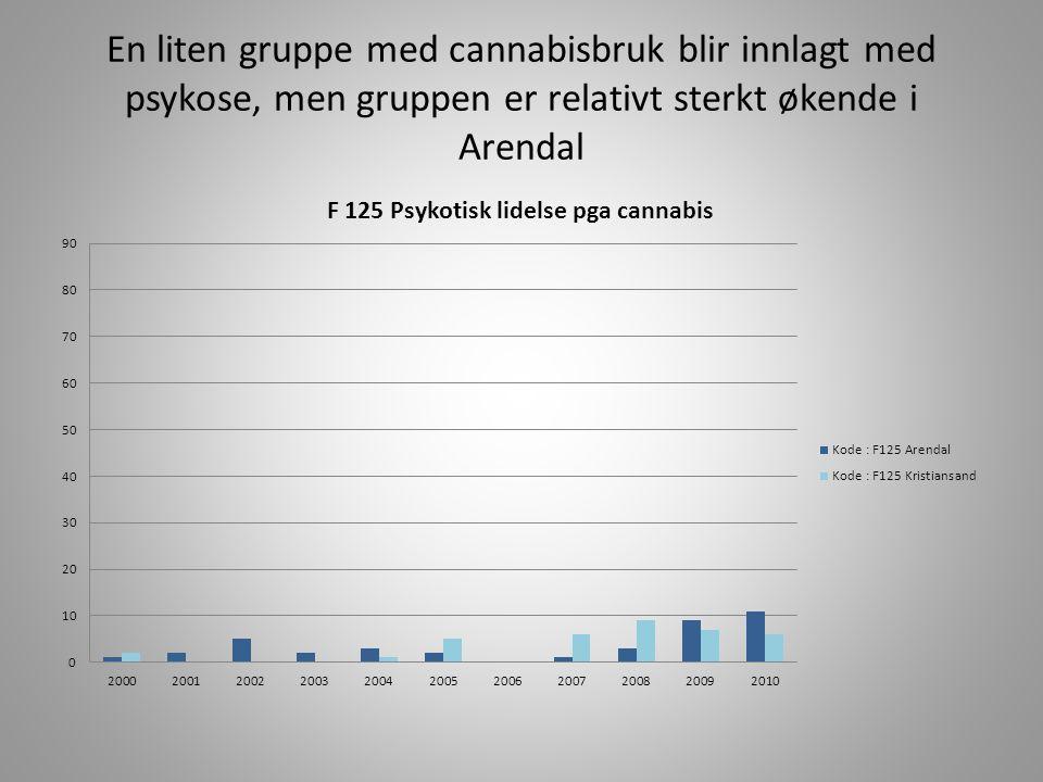 En liten gruppe med cannabisbruk blir innlagt med psykose, men gruppen er relativt sterkt økende i Arendal