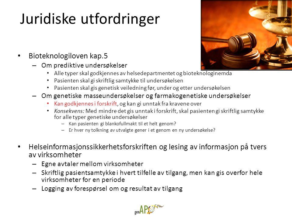 Juridiske utfordringer