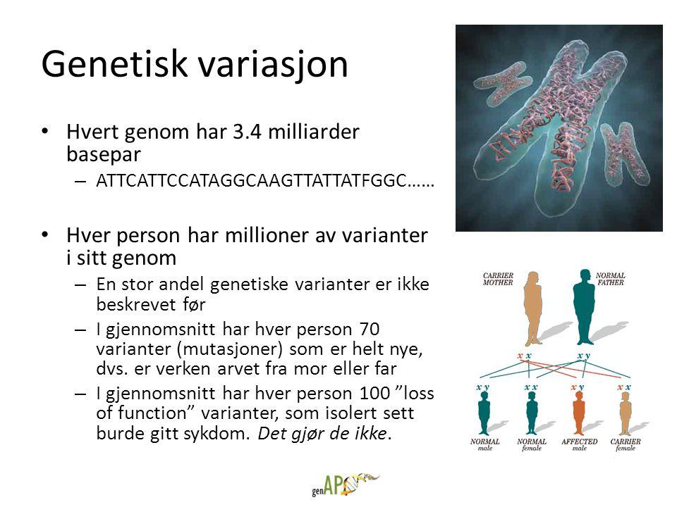 Genetisk variasjon Hvert genom har 3.4 milliarder basepar