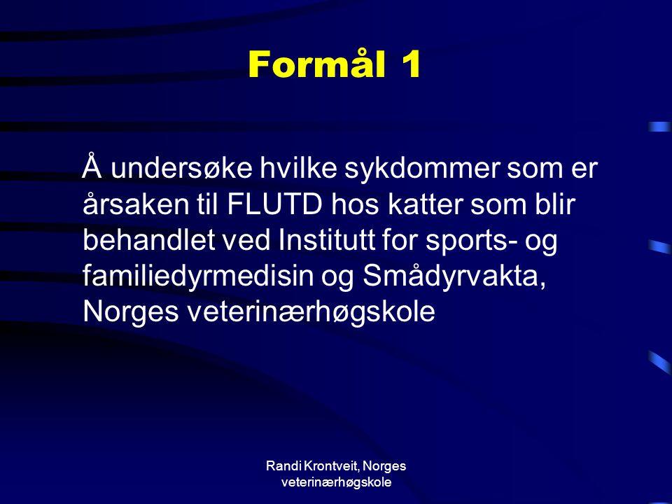 Randi Krontveit, Norges veterinærhøgskole