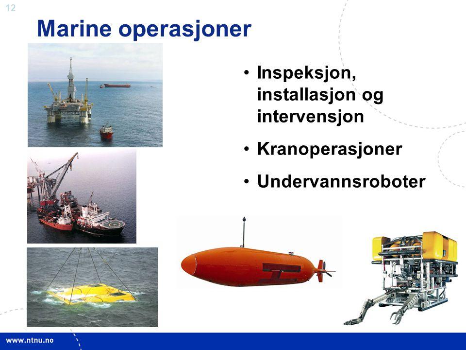 Marine operasjoner Inspeksjon, installasjon og intervensjon
