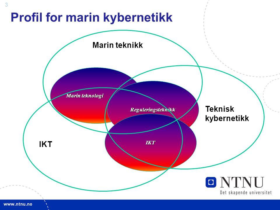Profil for marin kybernetikk