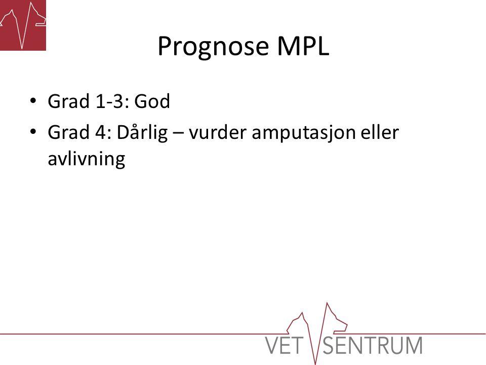 Prognose MPL Grad 1-3: God