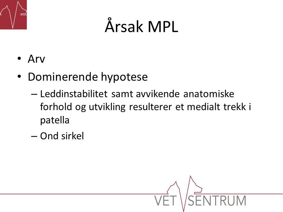 Årsak MPL Arv Dominerende hypotese