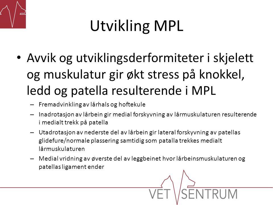 Utvikling MPL Avvik og utviklingsderformiteter i skjelett og muskulatur gir økt stress på knokkel, ledd og patella resulterende i MPL.