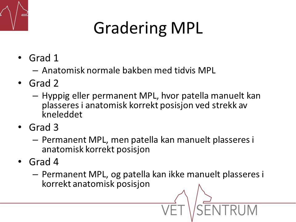 Gradering MPL Grad 1 Grad 2 Grad 3 Grad 4