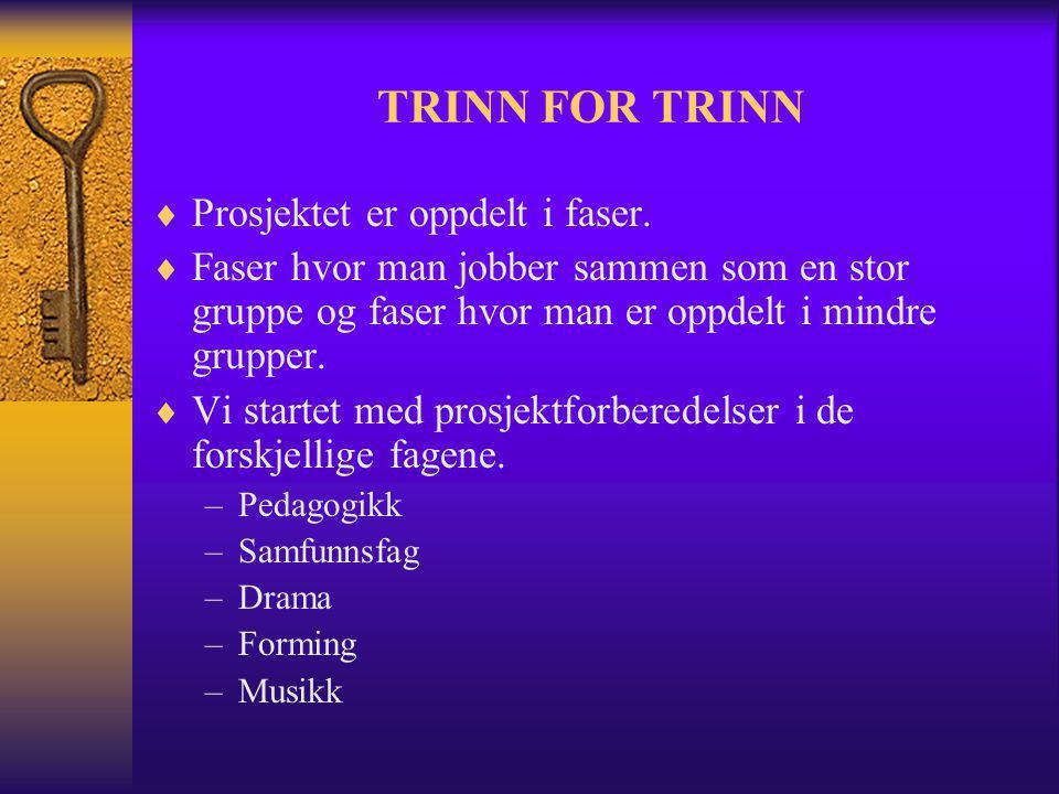 TRINN FOR TRINN Prosjektet er oppdelt i faser.