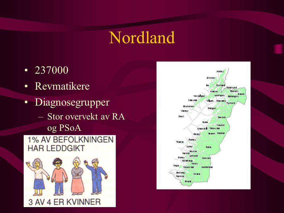 Nordland 237000 Revmatikere Diagnosegrupper