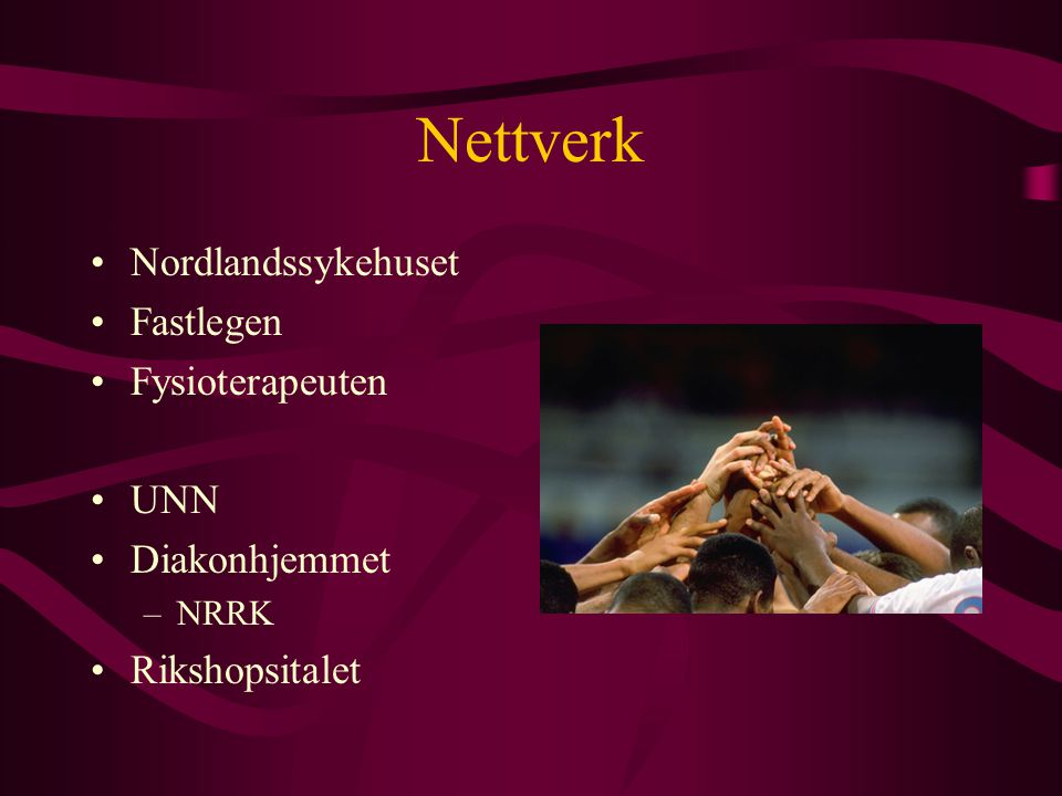 Nettverk Nordlandssykehuset Fastlegen Fysioterapeuten UNN