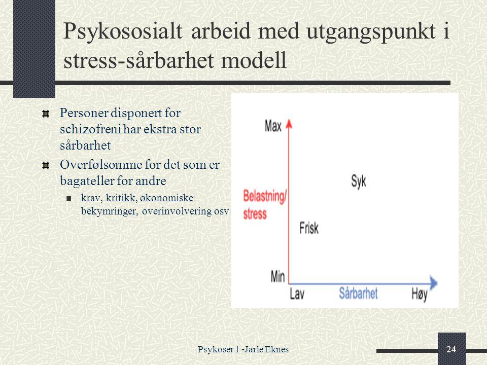 Psykososialt arbeid med utgangspunkt i stress-sårbarhet modell