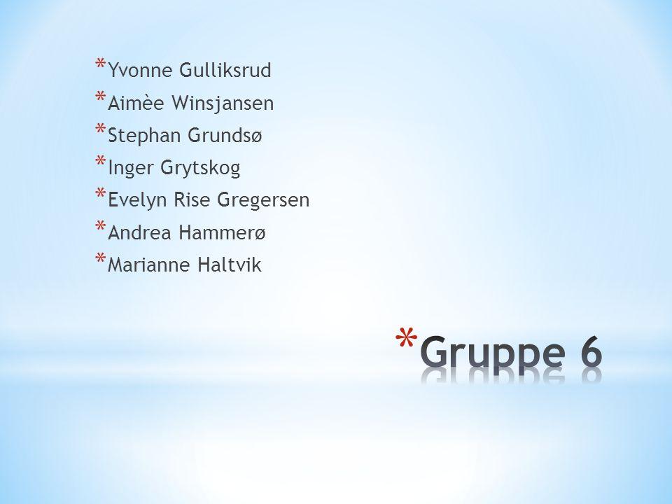 Gruppe 6 Yvonne Gulliksrud Aimèe Winsjansen Stephan Grundsø