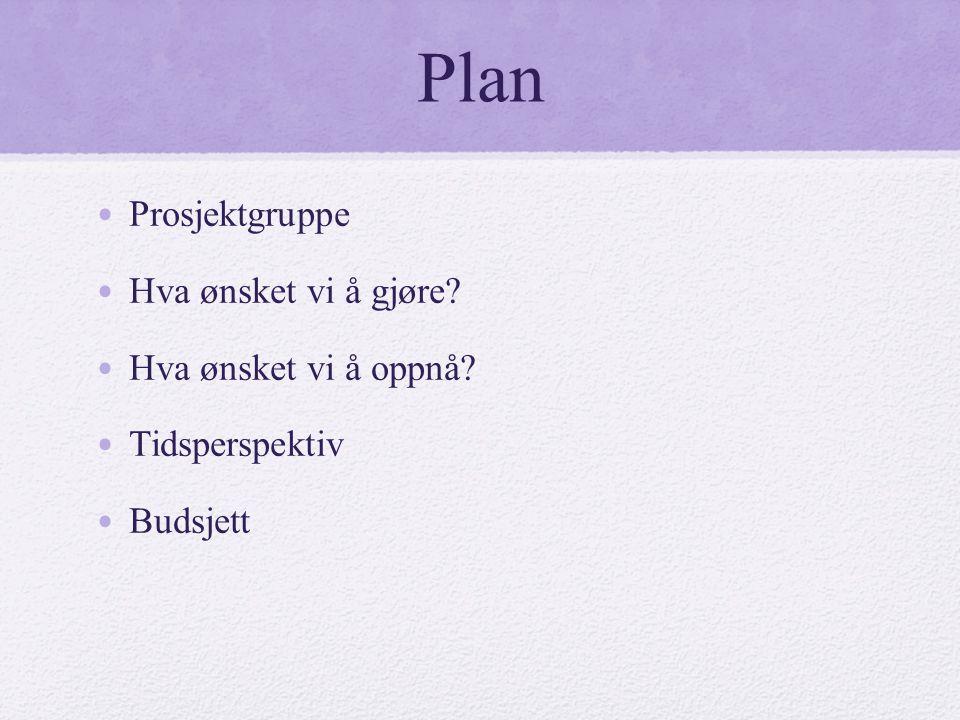 Plan Prosjektgruppe Hva ønsket vi å gjøre Hva ønsket vi å oppnå