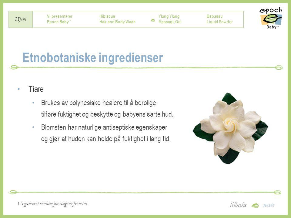 Etnobotaniske ingredienser