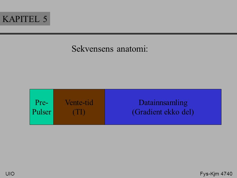 KAPITEL 5 Sekvensens anatomi: Pre- Pulser Vente-tid (TI)