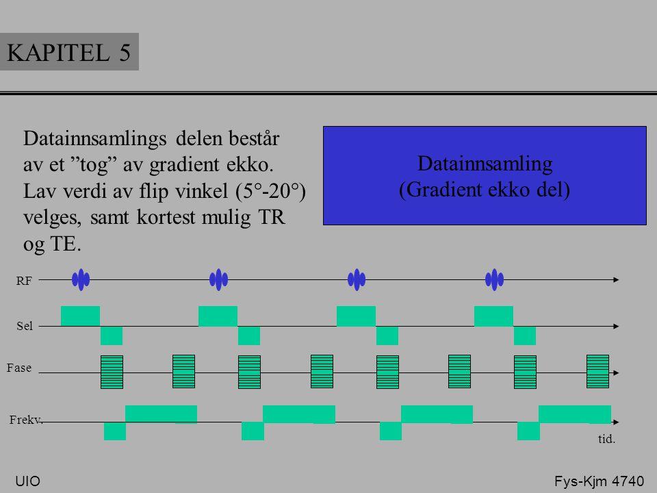 KAPITEL 5 Datainnsamlings delen består av et tog av gradient ekko.