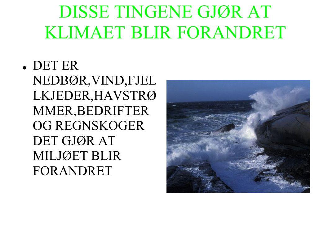DISSE TINGENE GJØR AT KLIMAET BLIR FORANDRET