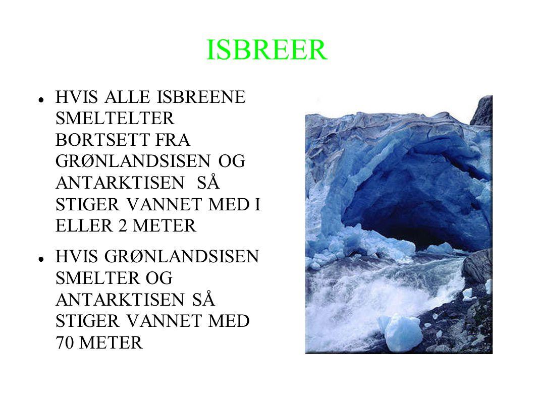 ISBREER HVIS ALLE ISBREENE SMELTELTER BORTSETT FRA GRØNLANDSISEN OG ANTARKTISEN SÅ STIGER VANNET MED I ELLER 2 METER.