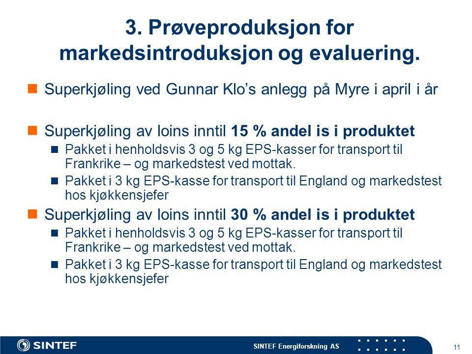 3. Prøveproduksjon for markedsintroduksjon og evaluering.