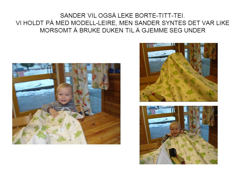 SANDER VIL OGSÅ LEKE BORTE-TITT-TEI