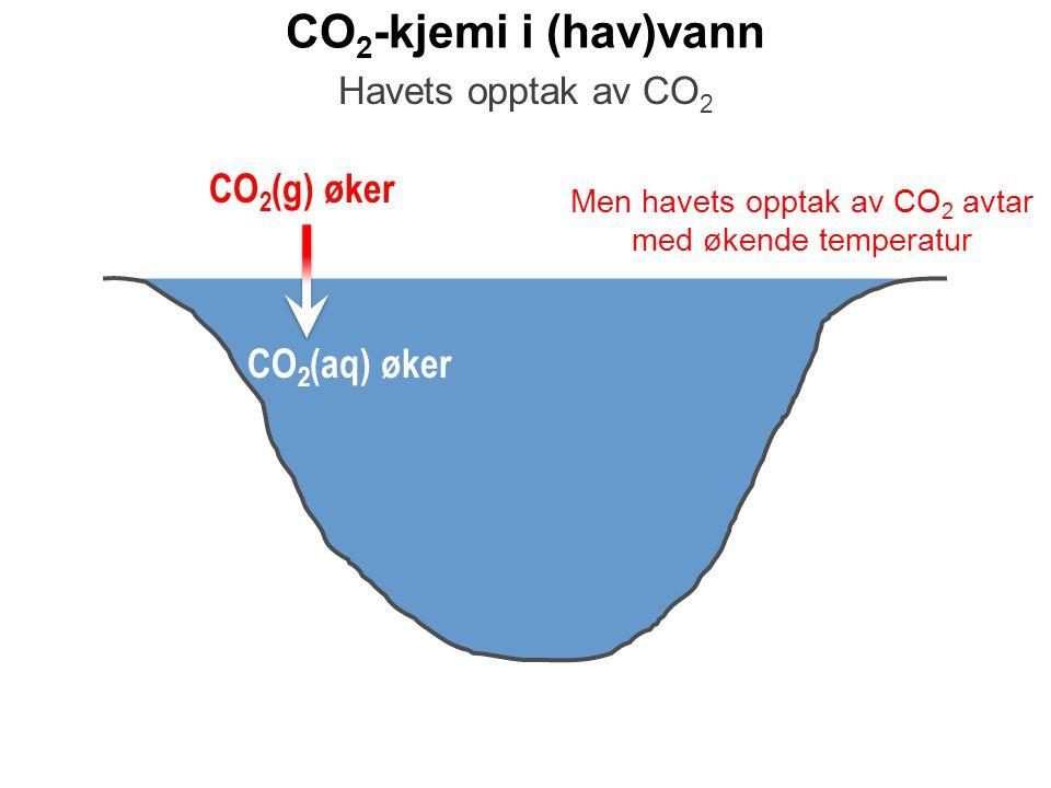 Men havets opptak av CO2 avtar med økende temperatur