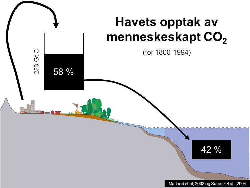 Havets opptak av menneskeskapt CO2