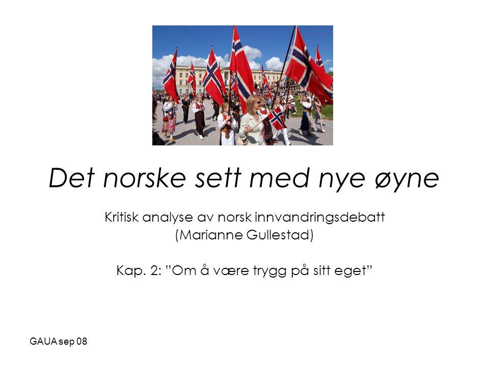 Det norske sett med nye øyne