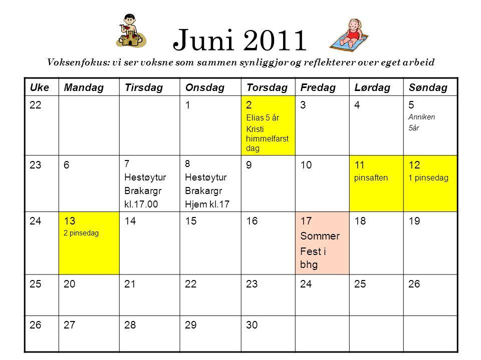 Juni 2011 Voksenfokus: vi ser voksne som sammen synliggjør og reflekterer over eget arbeid