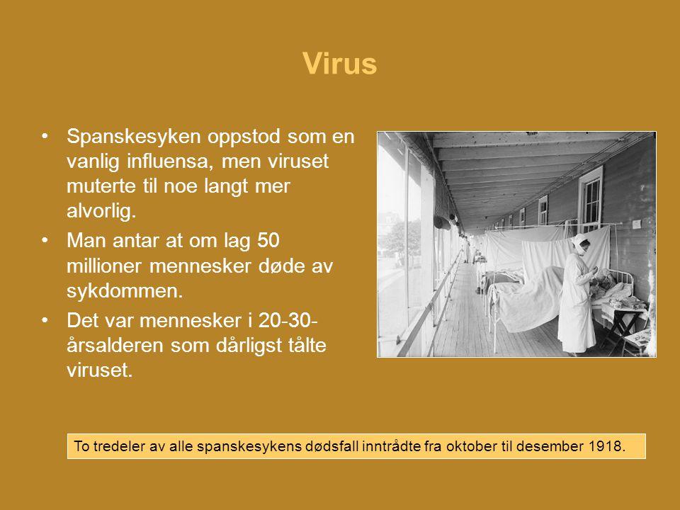 Virus Spanskesyken oppstod som en vanlig influensa, men viruset muterte til noe langt mer alvorlig.