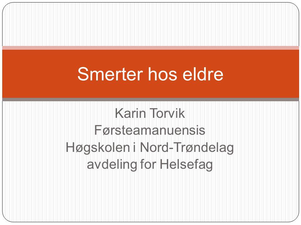 Høgskolen i Nord-Trøndelag