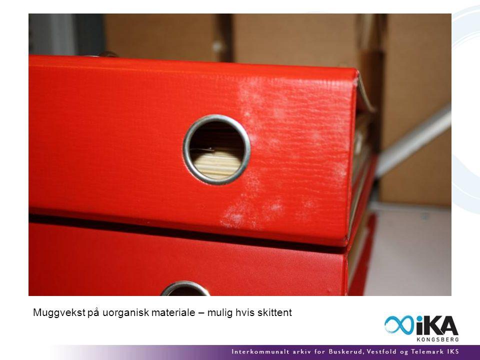 Muggvekst på uorganisk materiale – mulig hvis skittent