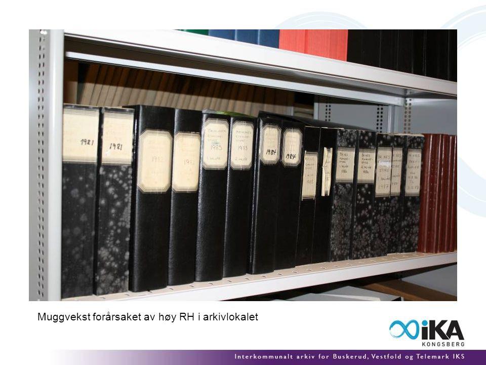 Muggvekst forårsaket av høy RH i arkivlokalet