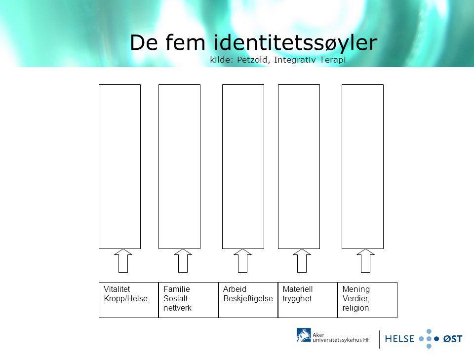 De fem identitetssøyler kilde: Petzold, Integrativ Terapi