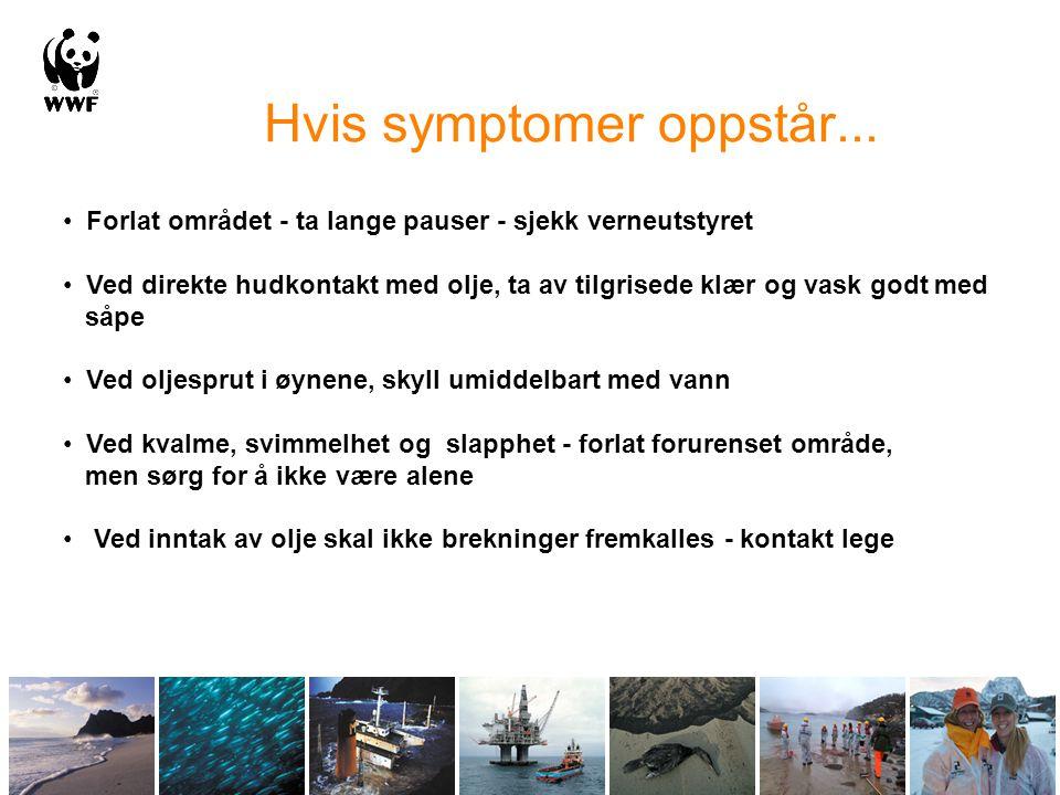 Hvis symptomer oppstår...